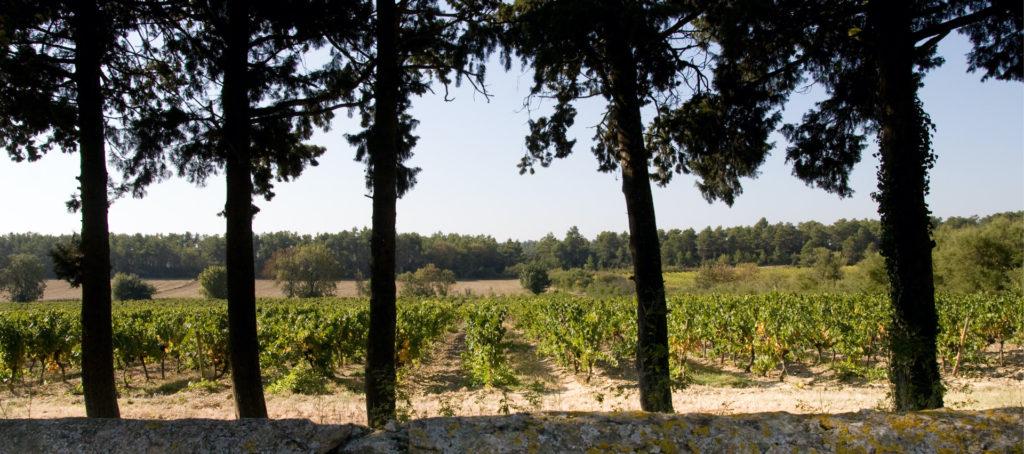 Le domaine La Bastide RougePeyre